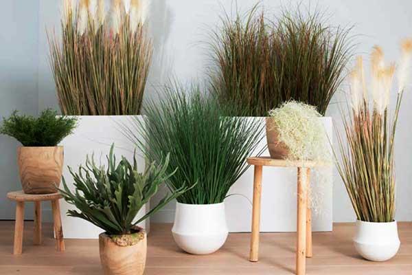 plantes artificelles entreprises